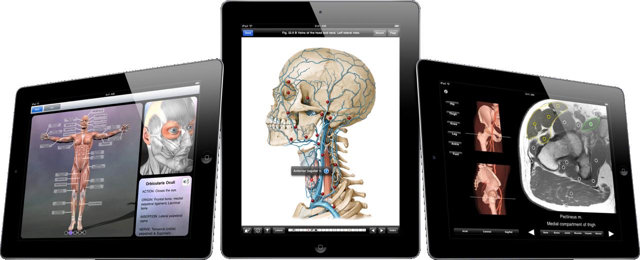 iPad_MedicalImage